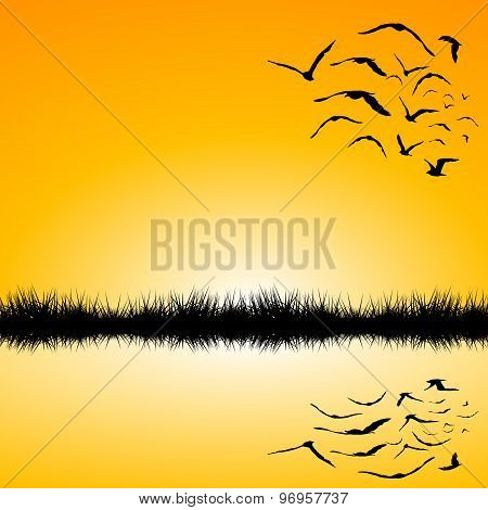 Landscape With A Lake And Birds Flying