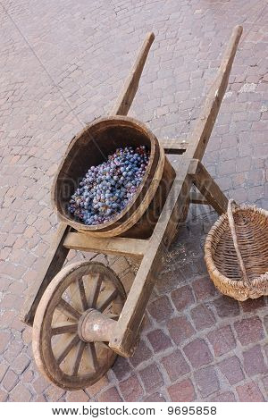 Old Wheelbarrow With Grape