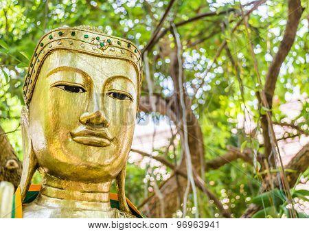 Ancient Buddha Sculpture Under The Big Green Tree