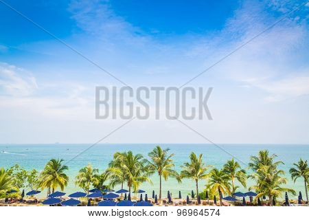 Palm tree with beautiful seascape