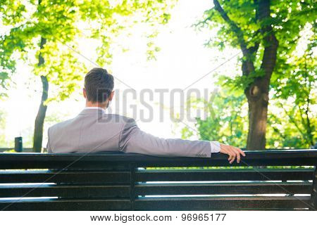 Back view portrait of a businessman sitting on the bench outdoors