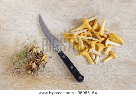 Cleaned Group Of Chantarelle And Knife
