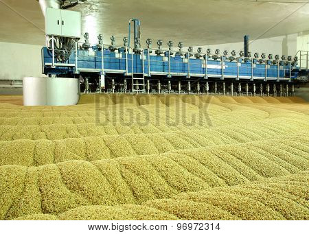 Industrial production of malt. A huge vat