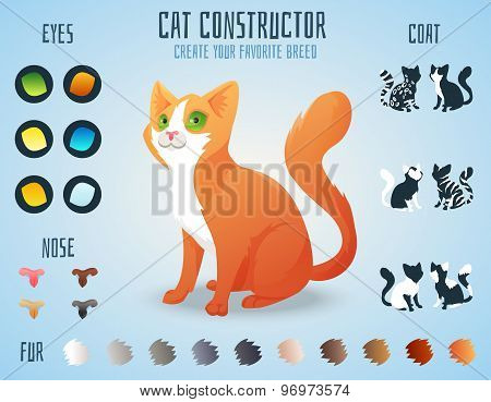Cute cat breed constructor. You can create your own kitten breed. Change color, eyes, noses, types o