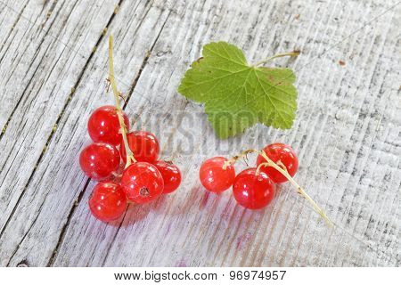 Close-up Of A Group Of Red Currant From Above