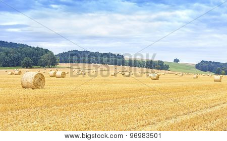 Panoramic View Of Harvested Field With Hay Bales.