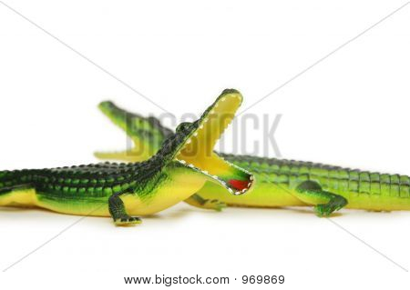Two Crocodiles Isolated On The White Background