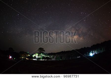 Silhouette Of Tree With Cloud And Milky Way. Long Exposure Photograph.