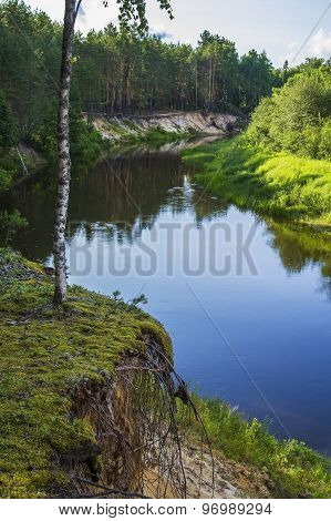 Landscape background small forest river with forest