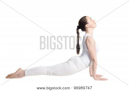 Yoga Upward Facing Dog Pose