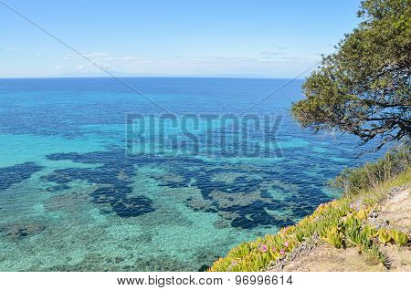 Beautiful Turquoise Transparent Mediterranean Sea View From The Hiking Trail