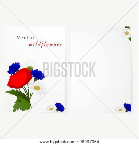 Template card with flowers chamomile, cornflowers and red poppy