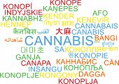 picture of cannabis  - Background concept wordcloud multilanguage international many language illustration of cannabis - JPG