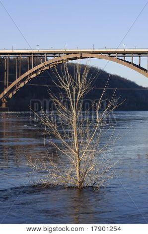 High Bridge Environs