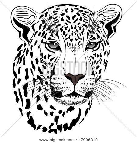 Leopard, Tattoo.