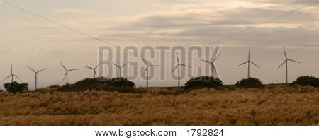 Line Of Wind Power Generators