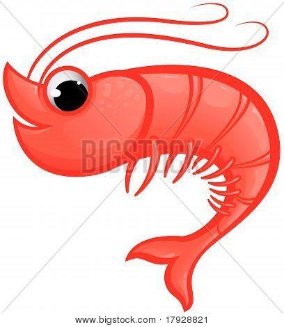 Shrimp Mascot