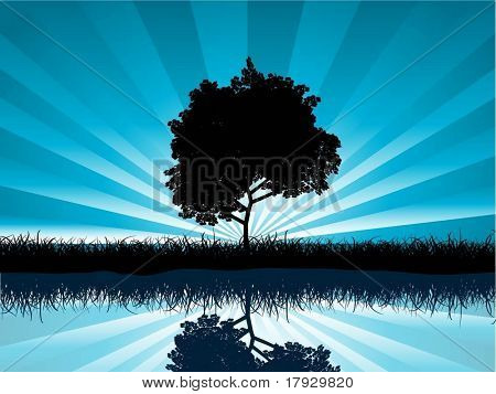 Solitary tree - vector