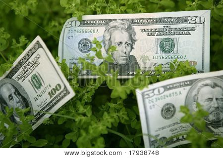 Dollar notes growing from a green plant, benefits growth metaphor