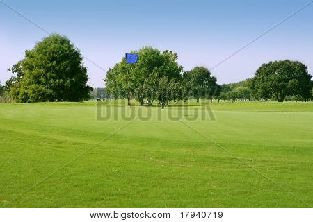 Beautiful Golf green grass sport field in Houston Texas