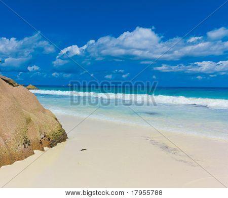 Tide Beach Surf