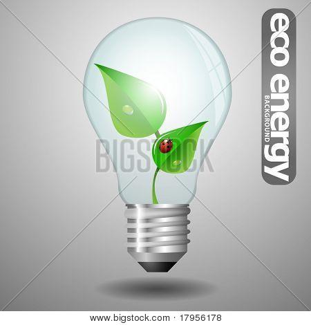 Eco bulb with leaves and ladybug