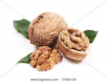 Walnut With Leaf