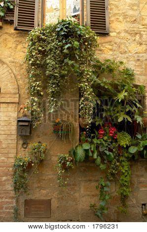 Doorway Garden, Italian Village