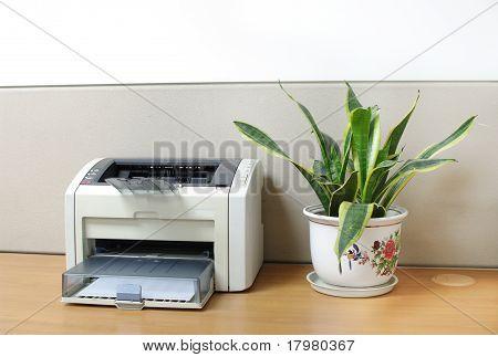 Printer On Desk With An Aloe Bonsai