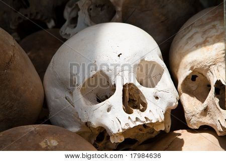 White skull from a mass grave of Khmer Rouge victims in Choeung Ek
