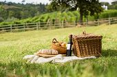 Picnic basket on grass with food and drink on blanket. Picnic lunch outdoor in a field on sunny day  poster