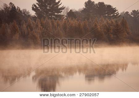 Misty Morning In Wisconsin