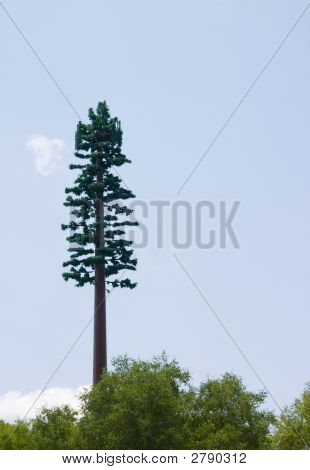 Camouflaged Cell Phone Tower