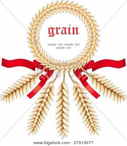 Wheat grains in a circle