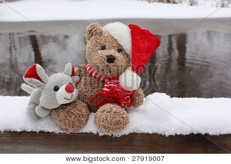 Un oso y su amigo.