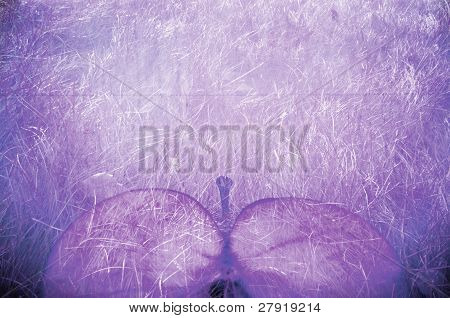 Bio Grunge Background Violet Apple