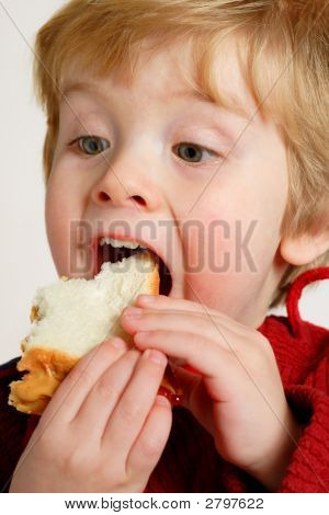 Enjoying A Peanut Butter And Jelly Sandwich