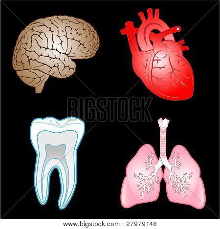 Vector icons médicas. Conjunto de colores. Simplemente cambiar. Otros iconos médicas que se puede ver en mi portfolio.