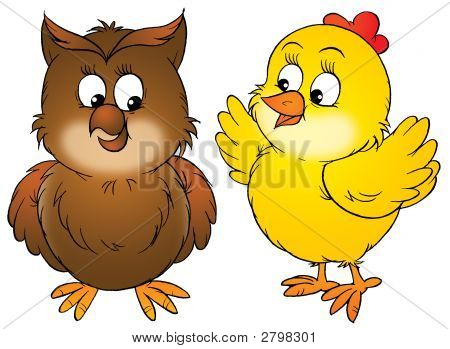 Chick And Owlet