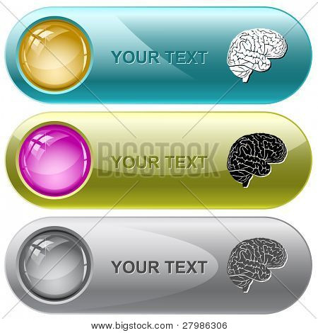 Brain. Vector internet buttons.