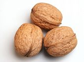 foto of vulva  - three of walnuts - JPG