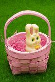 Easter Bunny In Basket