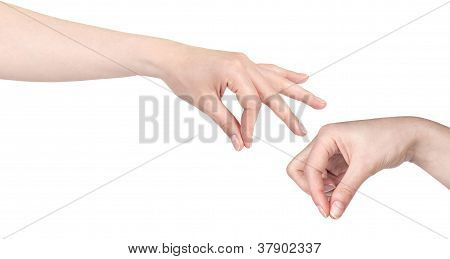 Woman Hand Picking  Isolated