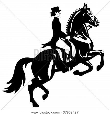 Dressage Rider Black White