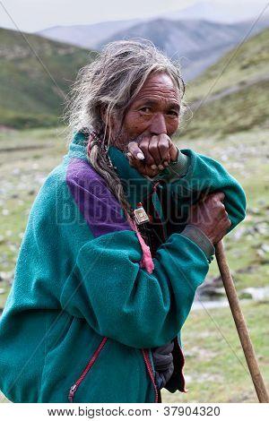 Tibetan Herdsman