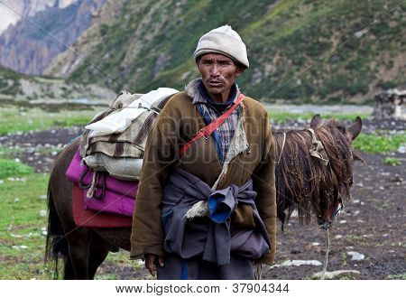 Tibetan nomad with horse