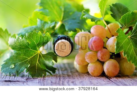 .cork Bottle Wine And Grapes