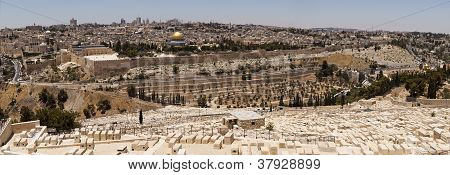 Jerusalem Panorama Viewpoint