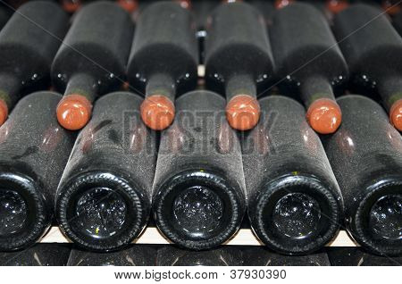 cellars with wine bottles