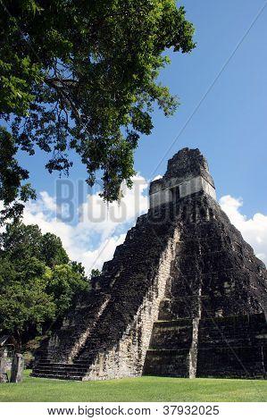 Templo del gran Jaguar en Tikal
